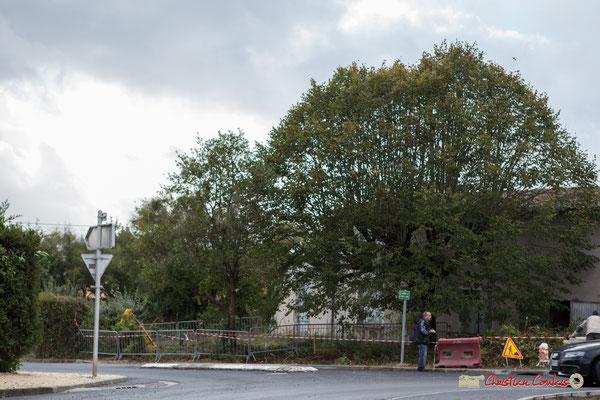 Les premiers travaux de démolition devraient démarer, pour la construction de la Résidence Argentina, à Cénac. 11/10/2012