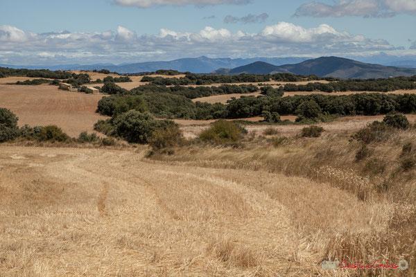 Panorama depuis la Chapelle extérieure à Ujué, Navarre, route NA-5311, GPS 42.451540, -1.497288