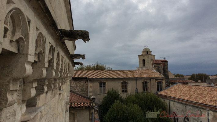 Gargouiles. Vue depuis l'une des terrasses de la Fondation Vincent van Gogh, au fond le dôme de la Chapelle du Méjan