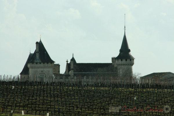 Toiture du Château de Carignan, et vignoble. Carignan-de-Bordeaux