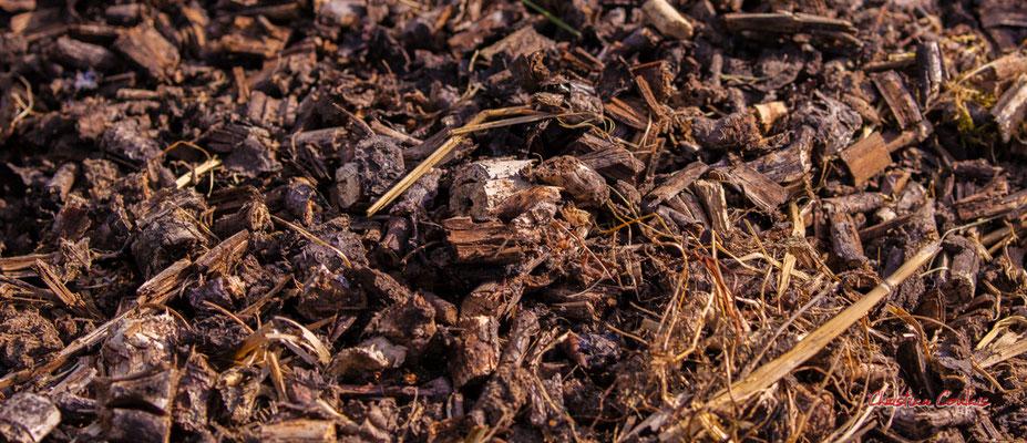 broyat en décomposition sur plate-bande, Cénac. Vendredi 3 avril 2020. Photographie : Christian Coulais