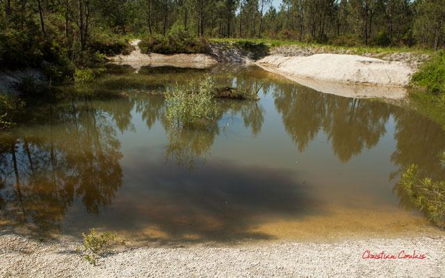 La petite gravière. Forêt de Migelan, espace naturel sensible, Martillac / Saucats / la Brède. Vendredi 22 mai 2020. Photographie : Christian Coulais