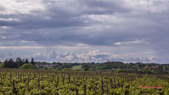 Ciels et nuages, dimanche 19 avril 2020, 17h54, le Garde, Cénac. Photographie : Christian Coulais / 70mm