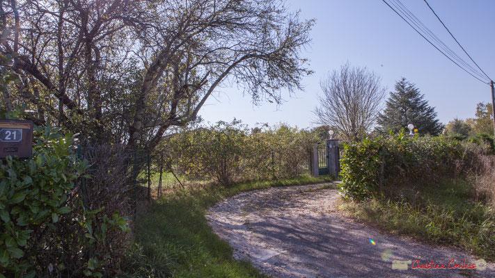 Entrée de propriété agréablement végétabilisée. Avenue de Lignan, Cénac, Gironde. 16/10/2017