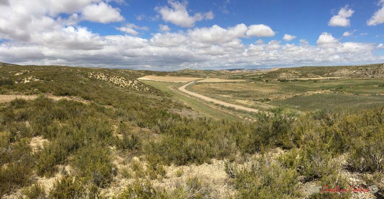 Piste entre Cabezo de Castildetierra et la Finca Los Aguilares. Parque natural de las Bardenas Reales, Navarra