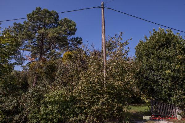 Entrée du parc du Clos Montagne, avenue du bois de filles, Cénac, Gironde. 16/10/2017