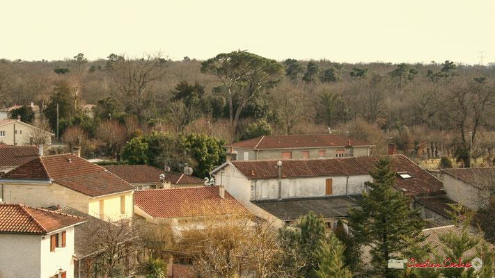 Vue panoramique sud, depuis le clocher-mur de l'église Saint-André, Cénac. 18/02/2010