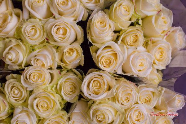 """""""Au grand jardin, là-bas Toutes ces roses blanches Tu les emporteras"""" Marché des Capucins, Bordeaux. Samedi 6 mars 2021. Photographie © Christian Coulais"""