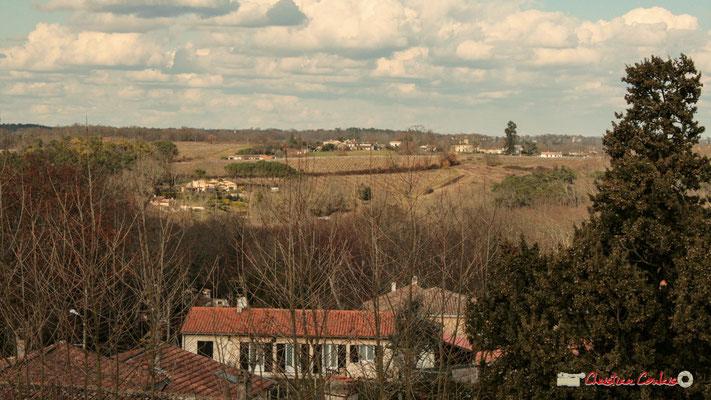 Vue panoramique nord (Graves, Montignac), depuis le clocher-mur de l'église Saint-André, Cénac. 18/02/2010