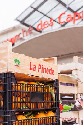 """""""La Pinède"""" Marché des Capucins, Bordeaux. Samedi 6 mars 2021. Photographie © Christian Coulais"""