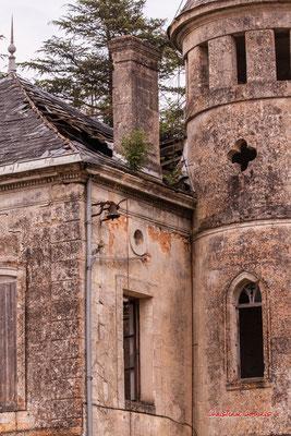 5/8 Château Haut-Brignon, Cénac. Mardi 7 avril 2020. Photographie : Christian Coulais