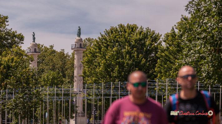 Colonnes rostrales (21m) de style néoclassique (1828) et platanes des Quinconces. Bordeaux fête le fleuve. 22/06/2019 Reproduction interdite - Tous droits réservés © Christian Coulais