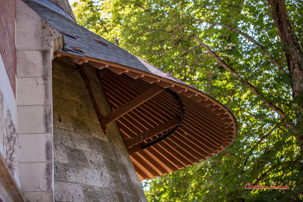 Toiture poivrière du manège, écuries du Château de Chaumont-sur-Loire, Loir-et-Cher, Région Centre-Val-de-Loire. Lundi 13 juillet 2020. Photographie © Christian Coulais