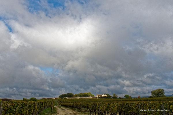 Château d'Yquem et son vignoble, Sauternes. Samedi 10 octobre 2020. Photographie © Jean-Pierre Couthouis
