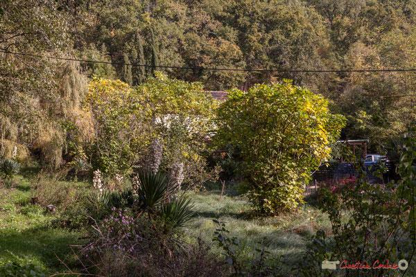 Habitat vernaculaire, à flanc de coteau calcaire. Allée Petit-Mâçon, Cénac, Gironde. 16/10/2017