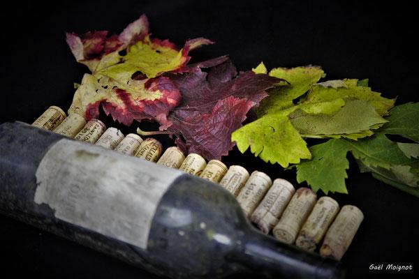 Nature morte aux multiples matériaux, Atelier Photo Numérique de l'AMAC. 09/11/2019 Photographie © Gaël Moignot