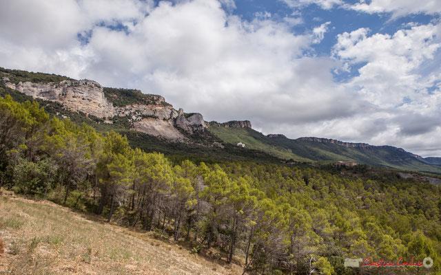 Sierra de Leyre, Monasterio San Salvador de Leyre, Yesa, Navarra