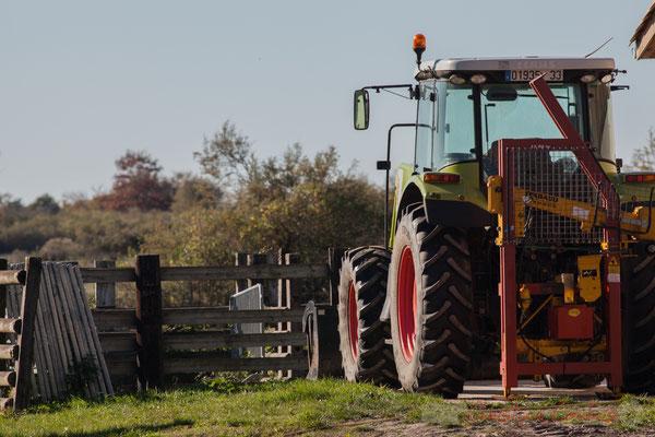 Tracteur de la ferme du Domaine de Graveyron, Audenge, espace naturel sensible de Gironde