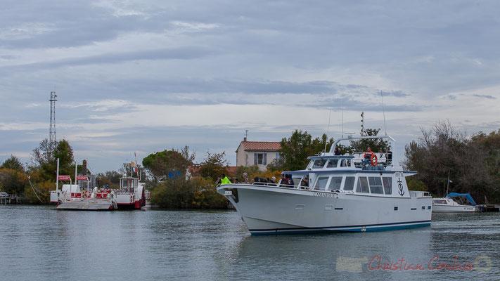 Le bateau Camargue propose une immersion avec la nature préservée, sa flore unique, sa faune riche d'oiseaux aquatiques, sans oublier la manade de taureaux et chevaux présentée par un gardian.
