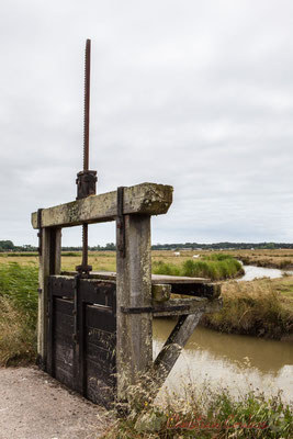 Ecluse au sein du marais doux. Balade à pied N°27 du Guide 2016 du Pays de Saint-Gilles-Croix-de-Vie, Vendée, Pays de la Loire