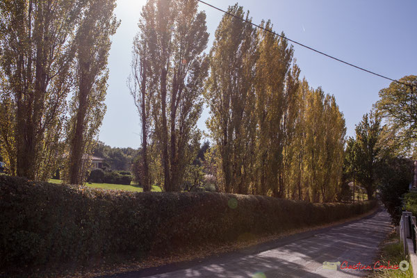 Avenue de Vinagrey depuis la place Moutille, Cénac, Gironde. 16/10/2017