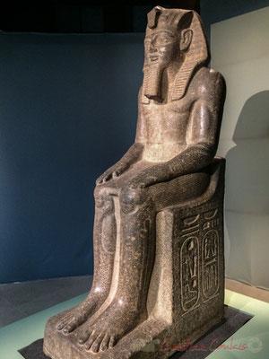 Statue colossale de Ramsès II. Granodiorite. Tell Basta (Bustatis), temple d'Osorkon II, deuxième cour Nouvel empire; XIXème dynastie; règne de Ramsès II (1279 -1213 av. J.-C.) Musée d'Art et d'Histoire de la ville de Genève
