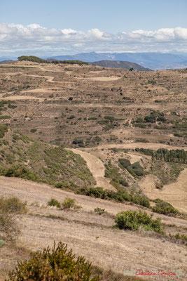 Terres agricoles non loin d'Ujué (Uxue), Navarre, Espagne