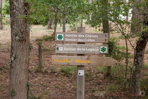 Sentier de la lagune de Contaut, Espace Naturel Sensible de Gironde, Hourtin