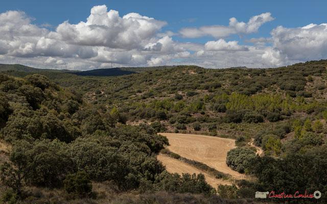 Cereales, viñedos y molinos de viento, entre Ujué y San Martín de Unx, Navarra / Céréales, vignes et éoliennes, entre Ujué et San Martin de Unx (objectif 42mm)