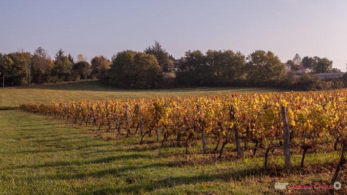 En direction du hameau de Mons, avenue de Mons, Cénac, Gironde. 16/10/2017