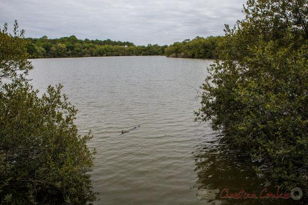 Lagune de Contaut, Hourtin