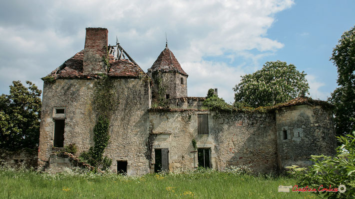 Château de Montignac, Cénac. 06/05/2010