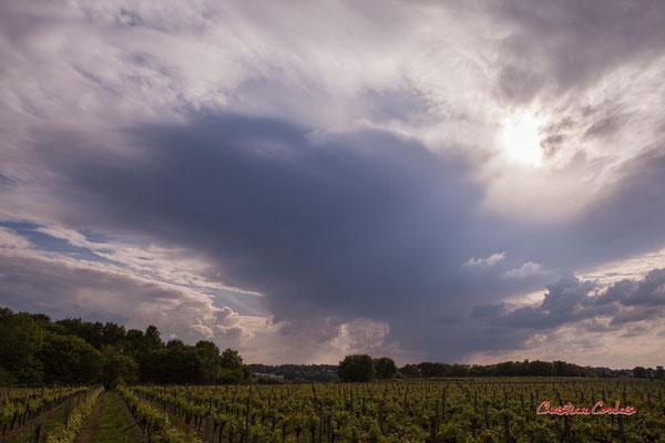 Ciels et nuages, vendredi 24 avril 2020, 18h22, le Garde, Cénac. Photographie : Christian Coulais / 24mm