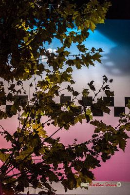 """""""Erable"""" Au fil des allées de la Foire aux plaisirs. Bordeaux, mercredi 17 octobre 2018"""