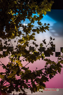 """""""Erable"""" Au fil des allées de la Foire aux plaisirs. Bordeaux, mercredi 17 octobre 2018. Reproduction interdite - Tous droits réservés © Christian Coulais"""