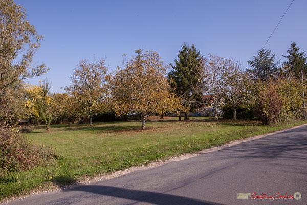 Petit parc arboré, sans clôture. Avenue de Lignan, Cénac, Gironde. 16/10/2017