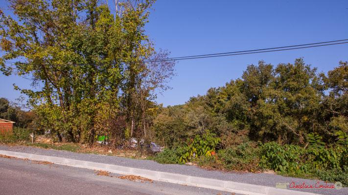 3 Depuis l'avenue du bois du moulin, le clos du Petit Maître, Cénac, Gironde. 16/10/2017