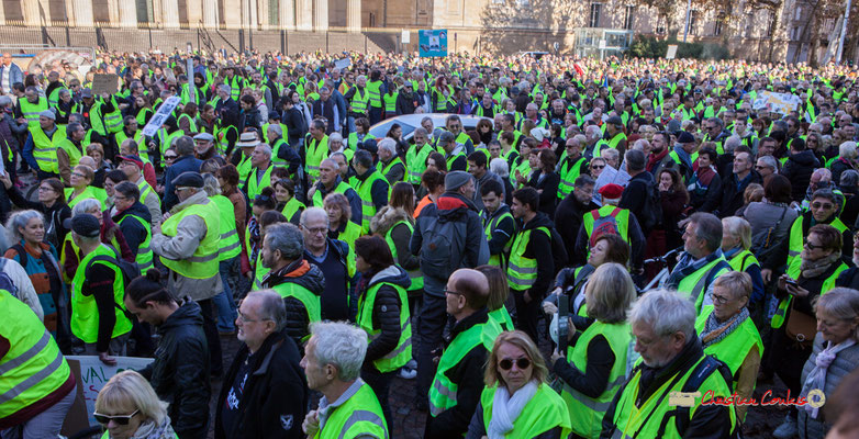 Manifestation nationale des gilets jaunes. Départ de la Place de la République vers le cours d'Albret, Bordeaux. Samedi 17 novembre 2018