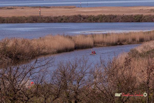Kayac depuis l'observatoire 360° de la réserve ornithologique du Teich, samedi 16 mars 2019