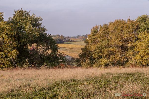 5 Point de vue vers Haut-Brignon, avenue de Mons, Cénac, Gironde. 16/10/2017
