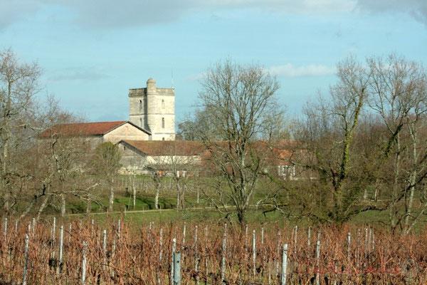 Château Baritault, vignoble sur Carignan-de-Bordeaux