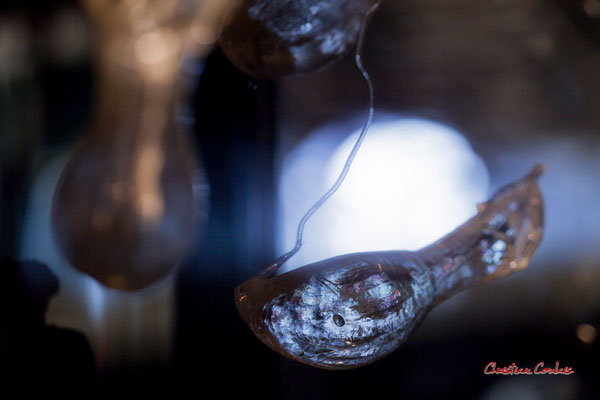 Sarracenia, plante carnivore. Création de Sébastien Rideau, le Ras d'eau, le Verdon-sur-mer. Samedi 3 juillet 2021. Photographie © Christian Coulais