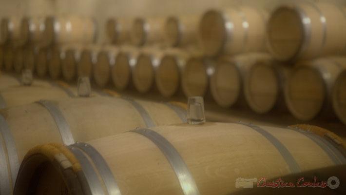 Château d'Yquem, chai d'élevage 1ère année