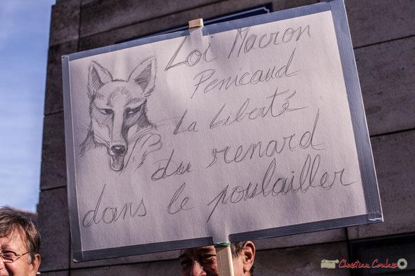 """""""Loi Pénicaud, la Liberté du renard dans le poulailler"""" Manifestation intersyndicale contre les réformes libérales de Macron. Bordeaux, 16/11/2017"""