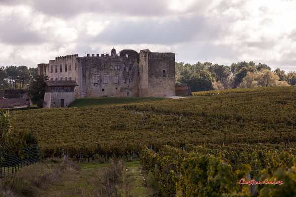 Château de Fargues-de-Langon. Samedi 10 octobre 2020. Photographie © Christian Coulais
