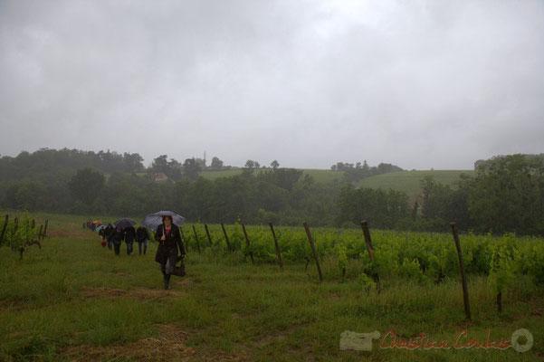 Vignoble du château Brethous; Randonnée jazzy avec les Choraleurs. Festival JAZZ360 2012, Camblanes-et-Meynac, dimanche 10 juin 2012