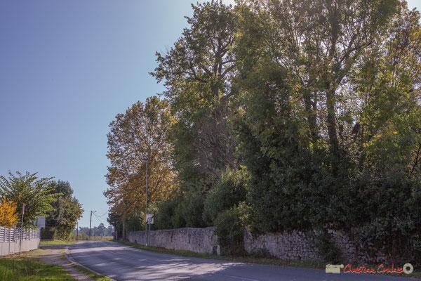 1 Mur et parc du château Guinault. Avenue de Bordeaux, Cénac, Gironde. 16/10/2017