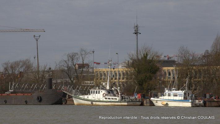 Rive gauche ; bateaux à quai. Bordeaux, samedi 16 mars 2013