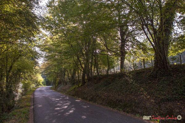 Avenue de Roquebrune, Cénac, Gironde. 16/10/2017