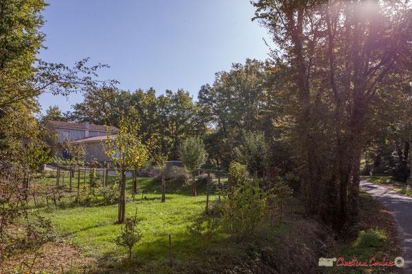 Vers Cénac, début de constructions éparses. Allée Lamothe, Cénac, Gironde. 16/10/1017